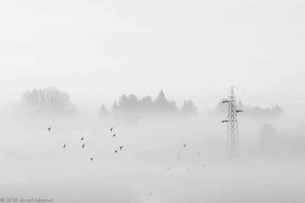 trebinje-info-fotograf-jovan-vidakovic-3651-6