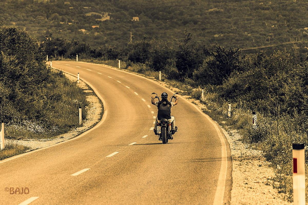 Freedom Ride Bajo Rogan