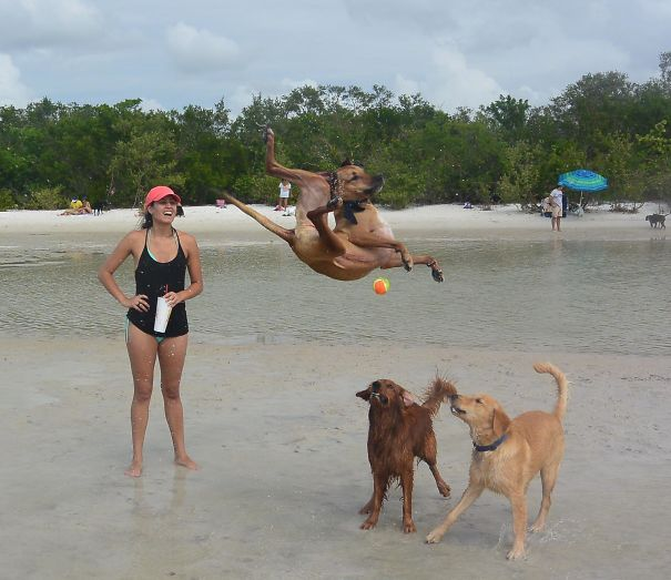 AD-Perfectly-Timed-Photos-That-Will-Mess-With-Your-Head-82