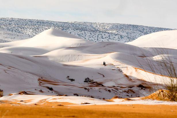 Snijeg pao u Sahari 2018 (2).jpg