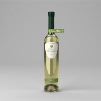 vina tarana-21